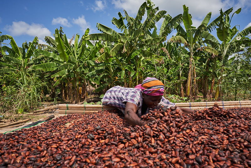 GCCP statement on COCOBOD/CCC farmer income communique